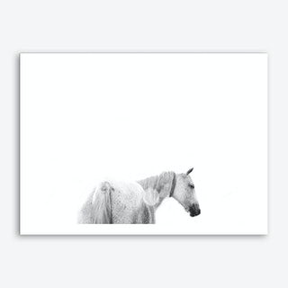 Horses Back Art Print
