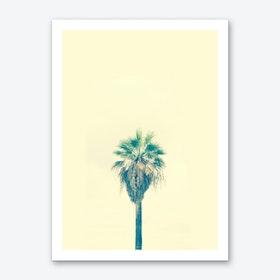 Yellow Sabal Palmetto Art Print