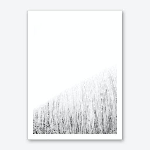 White Horse I  Art Print