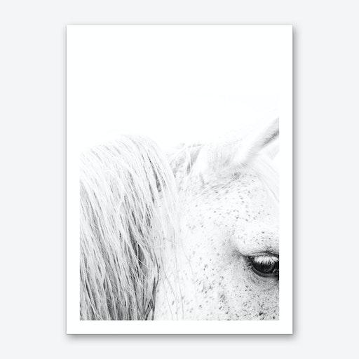 White Horse II Art Print