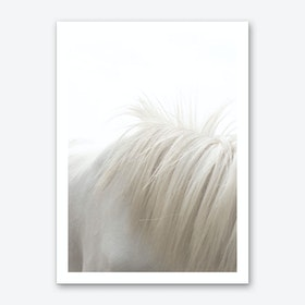 Horses Mane Art Print