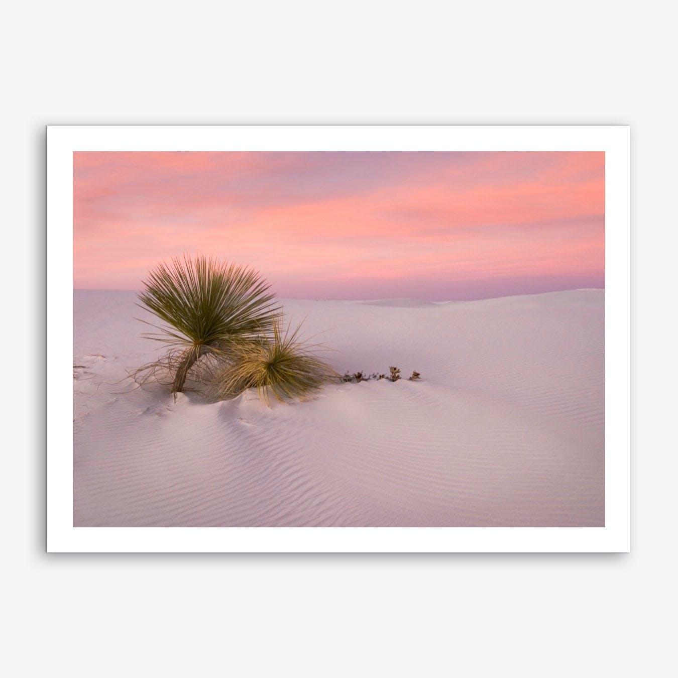 Desert Survivors Art Print