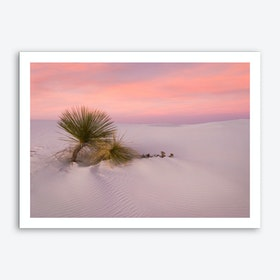 Desert Survivors Art Print