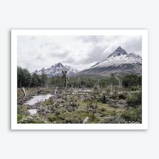 The Tundra Art Print