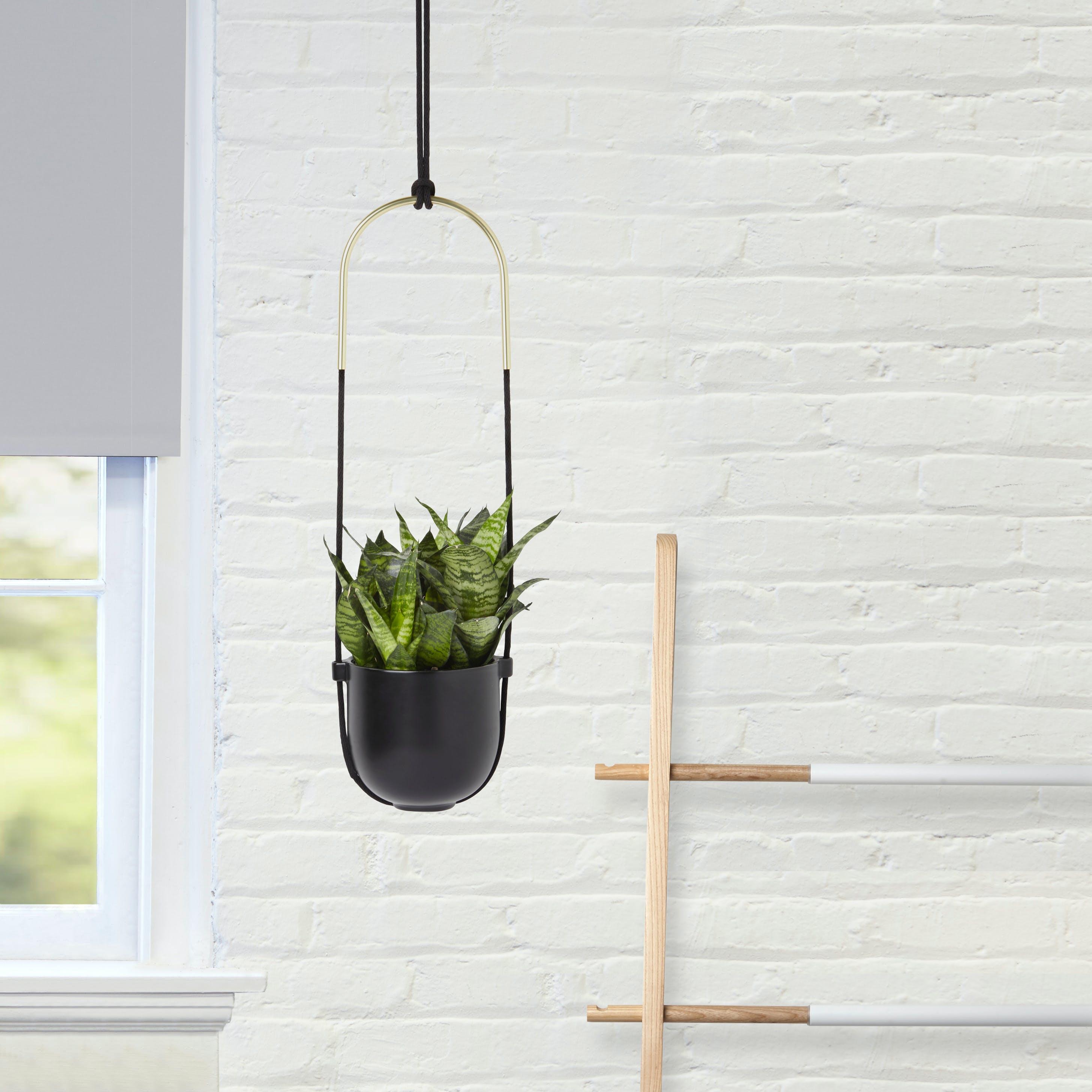 Bolo Planter in Black