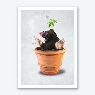 Pot Art Print