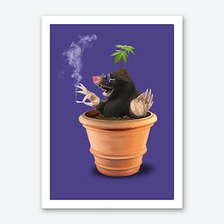 Pot (Colour) Art Print