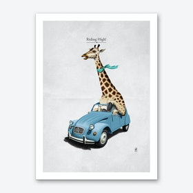 Riding High! Art Print