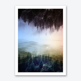 Flipped Forest