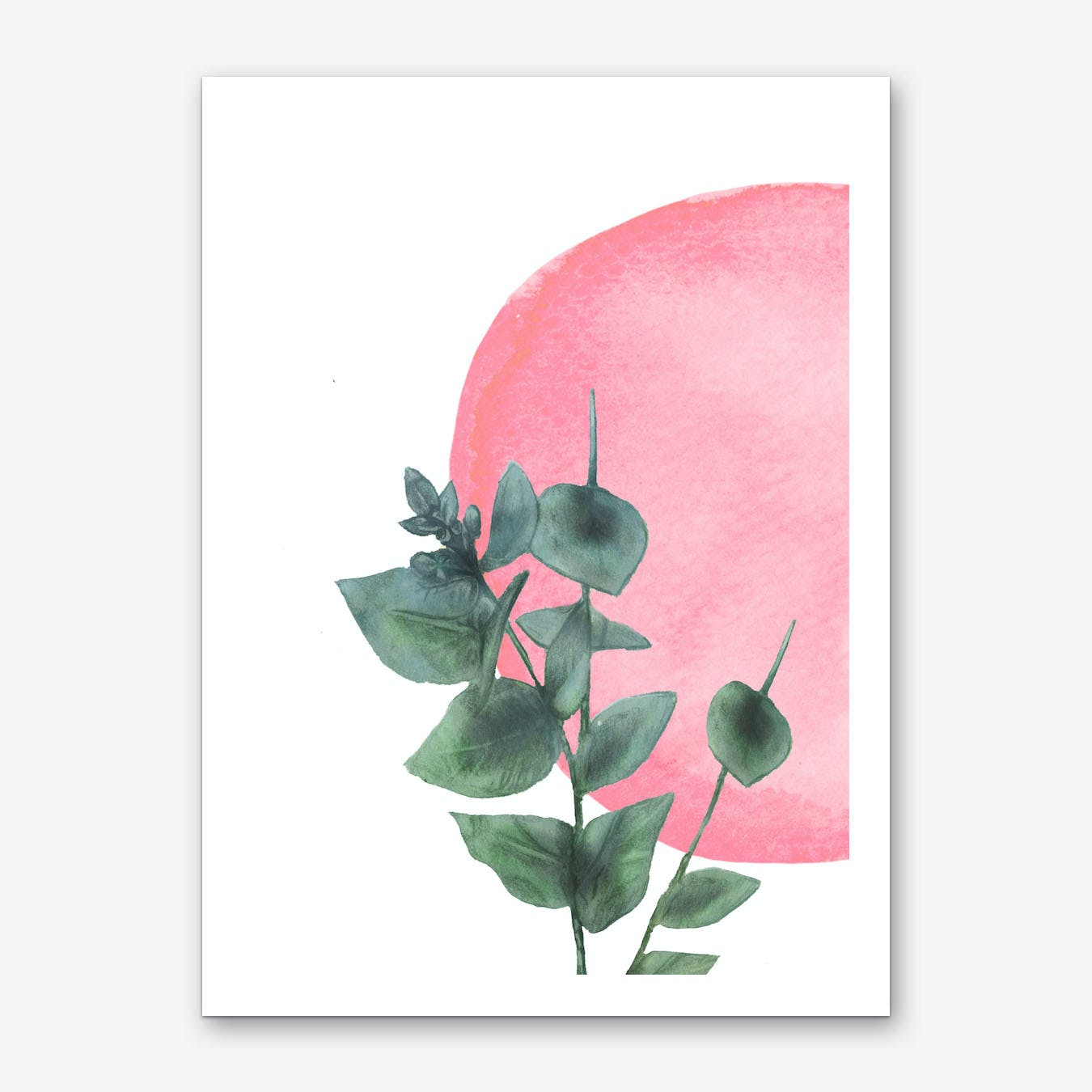 Eucal Art Print