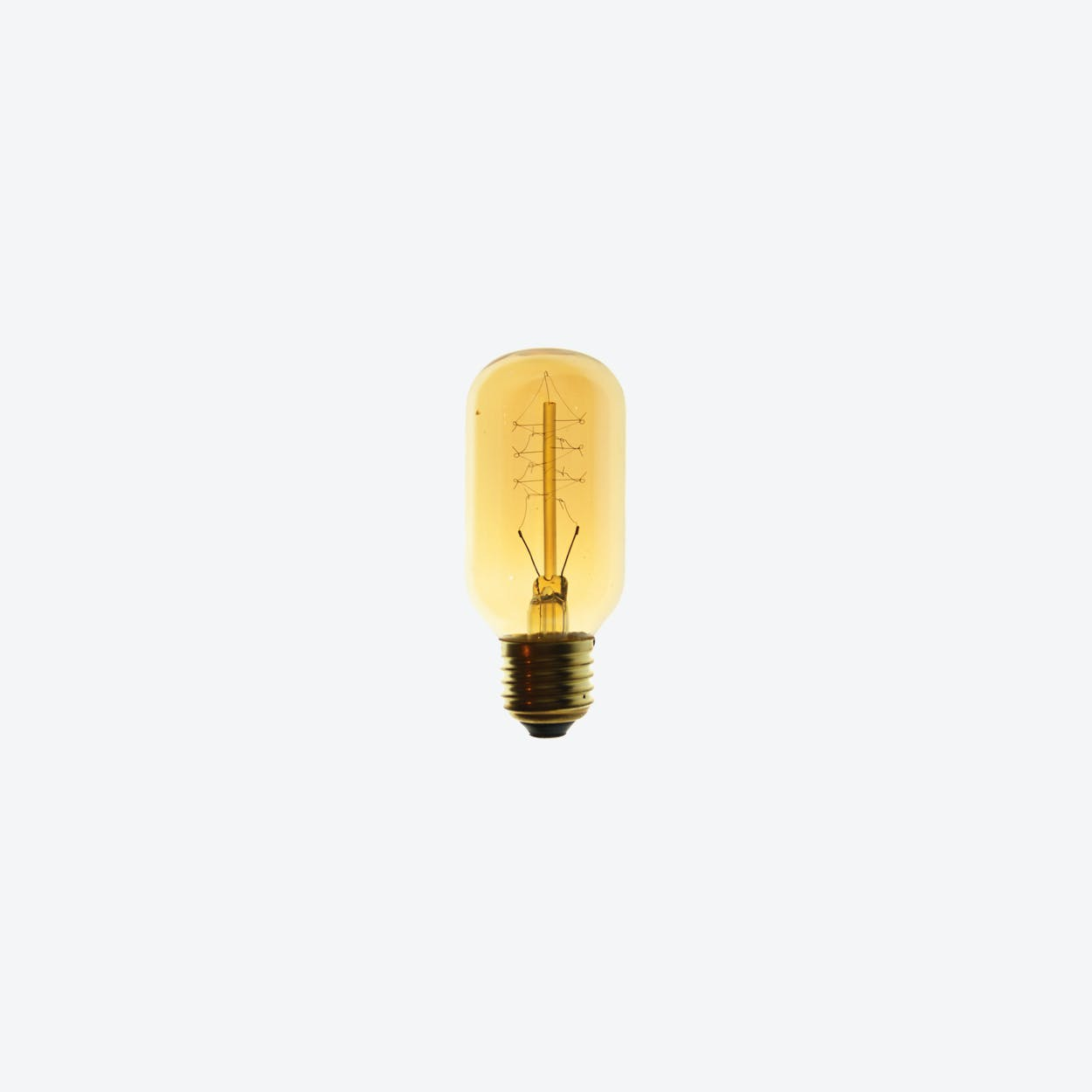Carbon Wire Light Bulb