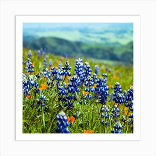 Lupine Mountain Background Square Art Print