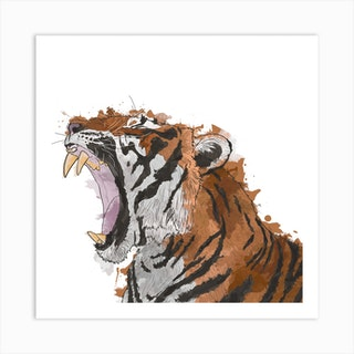 Roaring Tiger White Square Art Print