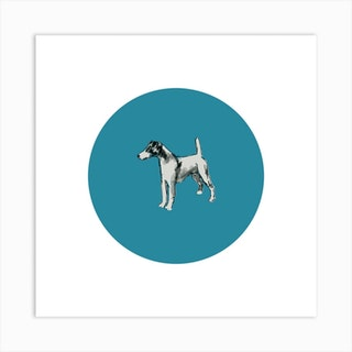 Smooth Fox Terrier On Blue Square Art Print