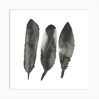 Feathered Stones Art Print