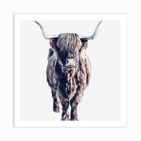 Highland Cattle Colin White Square Art Print