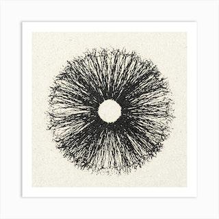 Iris White Art Print