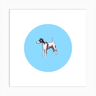 Smooth Fox Terrier On Bright Blue Square Art Print