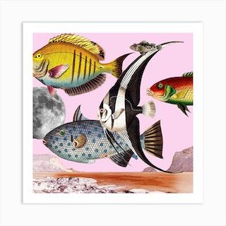 Fish World Pink Square Art Print