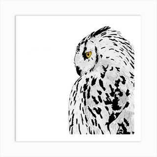 Snowy Owl White Square Art Print
