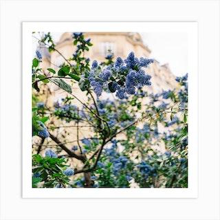 Paris Garden IV Art Print