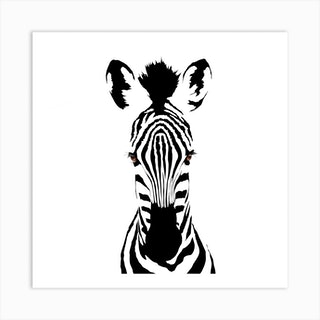 Brown Eyed Zebra White Series Square Art Print