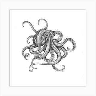 Octopus Square Art Print