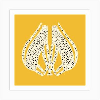 Cheetahs White Square Art Print