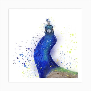 Wonky Peacock Art Print