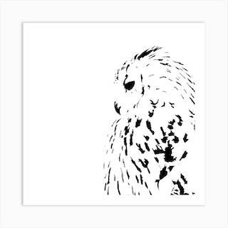 Snowy Owl White Series Square Art Print