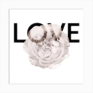 Love Rose Square Art Print