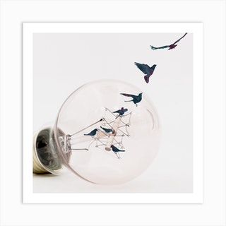 Birds Taking Flight Square Art Print