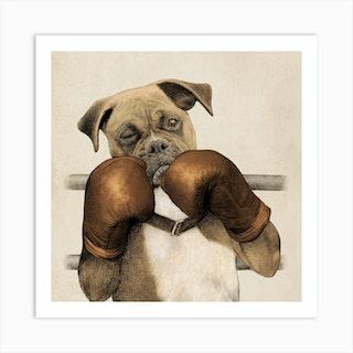 The Boxer Square Art Print