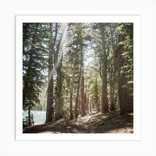 Mcleod Lake Trail Desaturated Square Art Print
