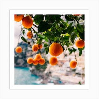 Amalfi Coast Oranges Art Print
