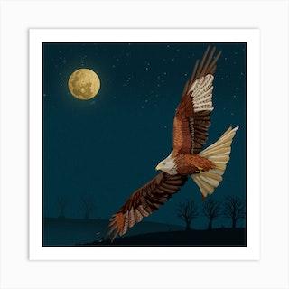 Red Kite Square Art Print