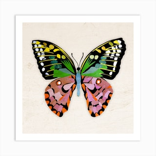 Butterfly In Green And Purple Art Print