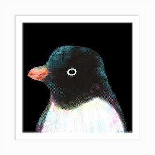 Adelie Penguin Square Art Print