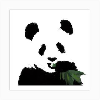 Panda White Series Square Art Print