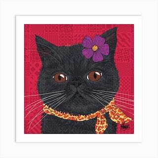 Ciccio Black Exotic Shorthair Square Art Print