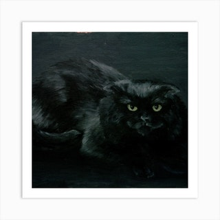 Black Cat Square Art Print