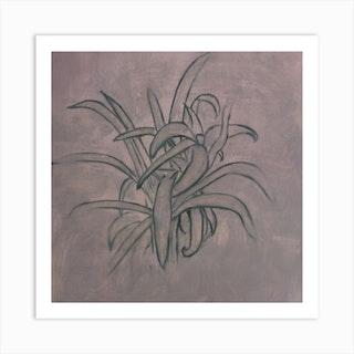 Lavender Plant Square Art Print
