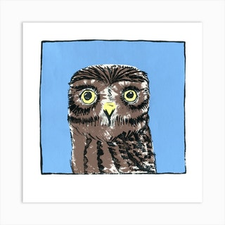 Little Owl Screenprint Art Print