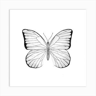 White Butterfly Square Art Print