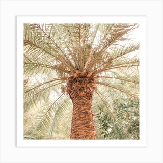 Tropical Palm Tree Square Art Print