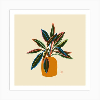 Plant With Colourful Leaves Square Art Print