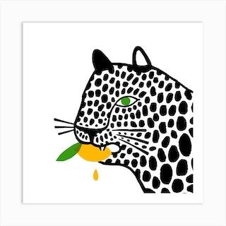 Big Cat Eating A Lemon Square Art Print