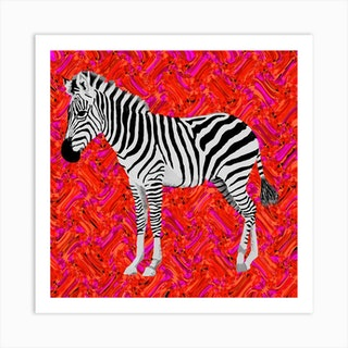 Oh Zebra Square Art Print
