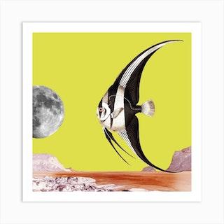 Plenty Of Fish In The Sea Yellow Square Art Print
