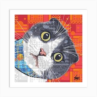 Kazuo Scottish Fold Cat Square Art Print